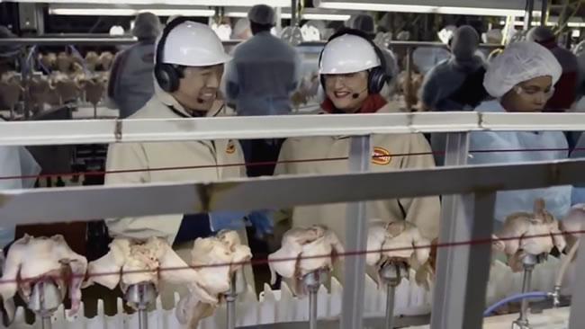 Chicken Process Line
